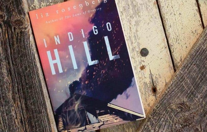 Indigo Hill: A Novel by Liz Rosenberg