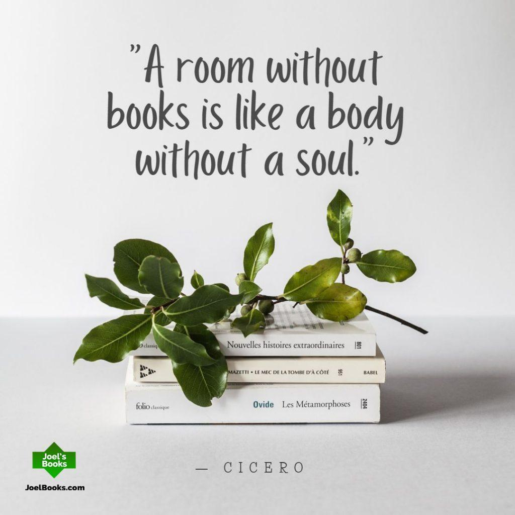 A room without books is like a body without a soul. Cicero Book Quote